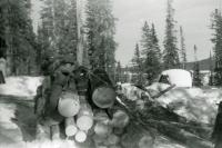 Everett Warren stacking logs