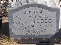 Alicia D. Booco