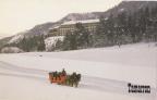 Tamarron, The Colorado winter experience.